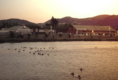 Napa River Photo