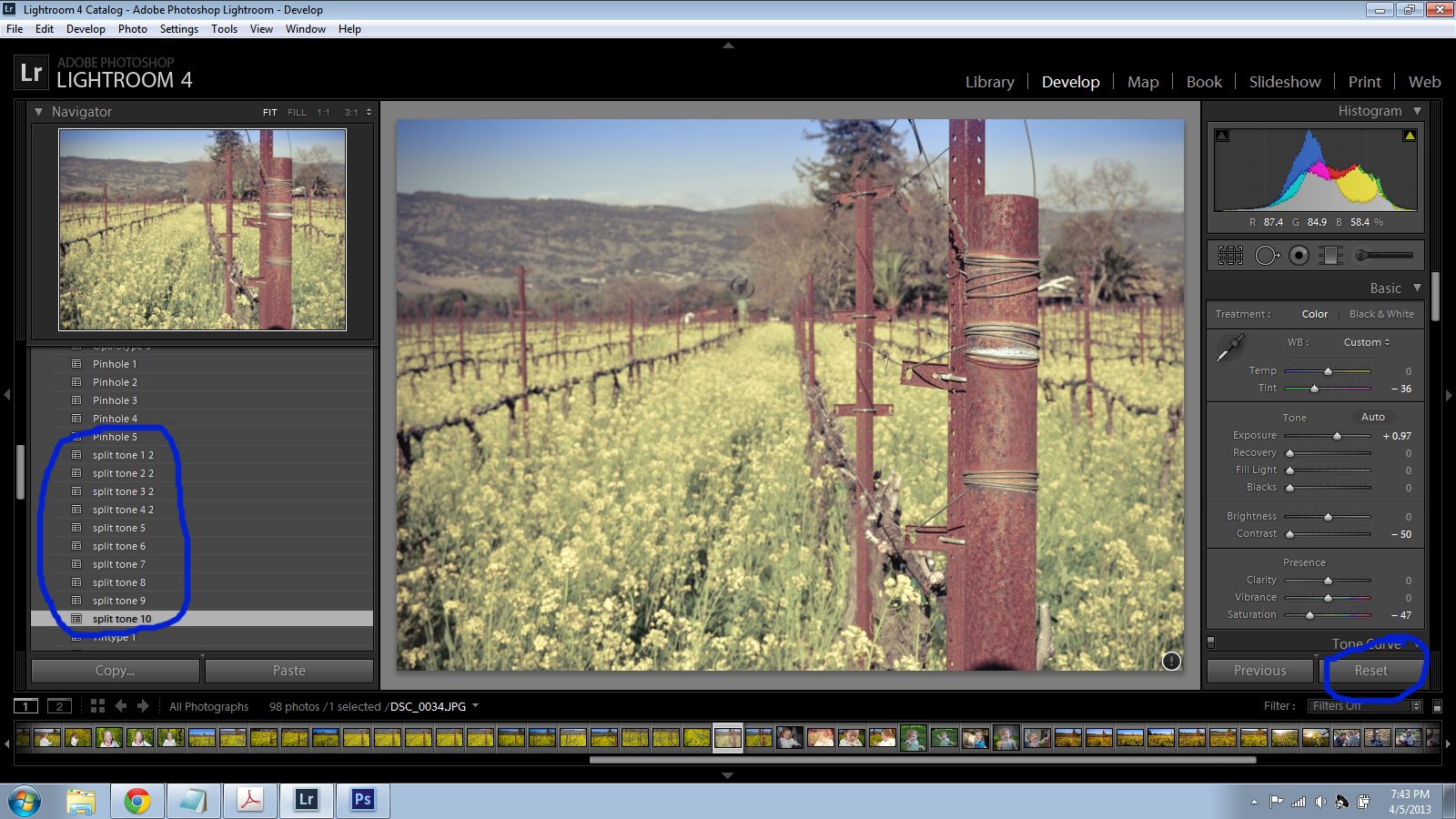 Presets Installed in Lightroom